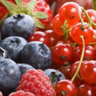Hortifrut anuncia que exportará berries desde Colombia